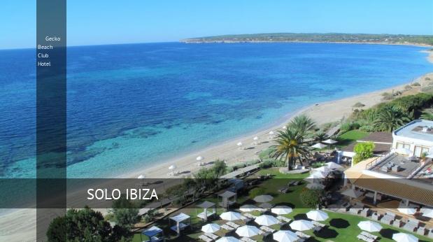 Gecko beach club hotel en formentera opiniones y reserva - Hotel gecko beach club formentera ...